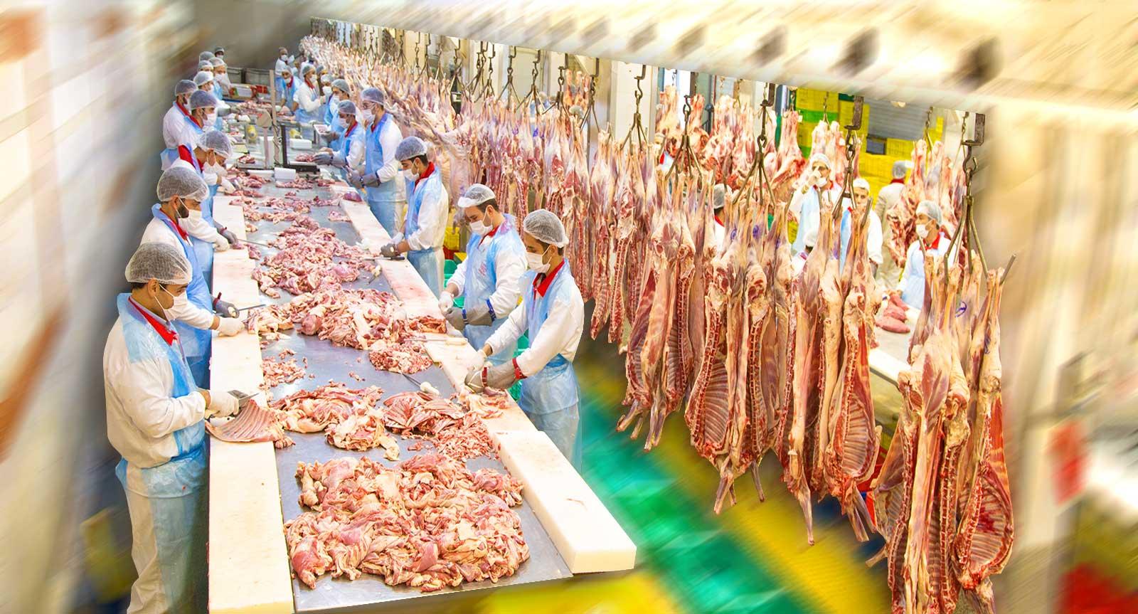 http://ar.mahyaprotein.comسالن گوشت مهیا پروتئین