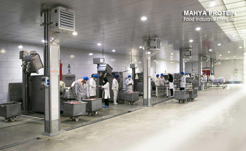 مصنع محافظة زنجان